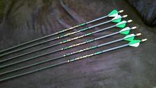 Carbon Stalker Xtreme 500 arrows