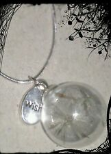 20mm glass wish charm with genuine dandelion seeds on a sterling silver chain