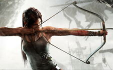 "10 Tomb Raider 9 - 2013 Video Game Art 22""x14"" Poster"