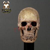 ACI Toys 1/6 753 Cannibal Skull _Warrior Battle War Now  AT032A