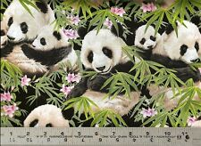 Elizabeth's Studio ~ REALISTIC PANDA BEARS ~ 100% Cotton Quilt Fabric Remnant