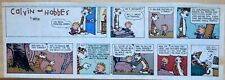 Calvin and Hobbes by Bill Watterson - color Sunday comic page - Nov. 5, 1989