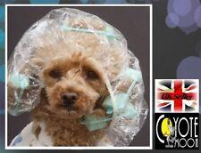 10 Disposable Waterproof Clear Hair Polythene elasticated Shower Cap,Travel,Tan,