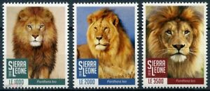 2018 Sierra Leone, wild cats, lions, 3 stamps, MNH
