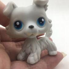 LPS Toys Littlest Pet Shop 363 Grey Collie Dog Blue Eyes Puppy Kids Gift Rare