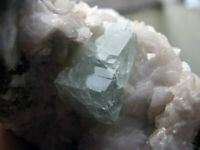 FLUORITE GREEN CUBIC CRYSTALS with CALCITES on PYRITE as MATRIX from PERÚ...