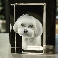 3D Glas Foto Würfel Gravur Persönlich Geschenkidee zu Weihnachten Katzen Tiere
