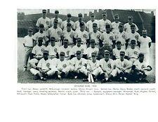 1956 CHICAGO CUBS 8X10 TEAM PHOTO  BASEBALL HOF  USA ILLINOIS WRIGLEY