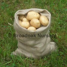 Jute Hessian Sacks 30 X 45cm Close Weave - Easy Carry 5kg Potato & Veg Storage