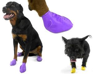 Pawz Dog Boots 12-pack Waterproof Sizes XXS-XS-SM-MD-LG-XL