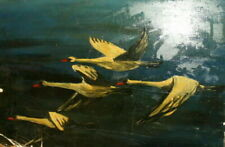 Impressionism Birds Art Paintings