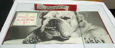 """HALLMARK BANNER OF BULLDOG """"TO KNOW ME IS TO LOVE ME"""" IN ORIGINAL BOX ***"""