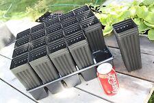 "Twenty 8"" Mini Tree Pots with tray"