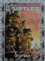 Teenage Mutant Ninja Turtles (2011) IDW - #100, 1:25 Williams II Variant, NM