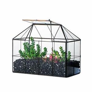 NCYP Glass Terrarium Geometric, Black Grid House Shape Decor Mini Greenhouse