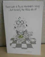 Happy Birthday Humour Card - There was a fly in Norman's Soup - the frog ate it