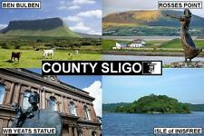 SOUVENIR FRIDGE MAGNET of COUNTY SLIGO IRELAND & YEATS & INISFREE & BEN BULBEN