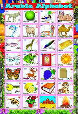 A2 laminated LEARN ARABIC ALPHABET LETTERS POSTER educational language madrassah