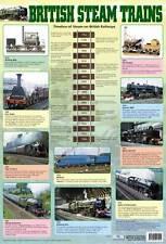 Educational Poster British Steam Trains - The Rocket, Mallard (0133)