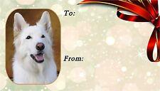 German Shepherd Dog (White) Self Adhesive Gift Labels by Starprint