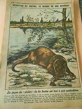 La Loutre ce bandit de nos rivières Print