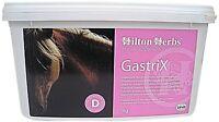 HILTON HERBS GASTRIX HORSE SUPPLEMENT SUPPORTS DIGESTIVE HEALTH