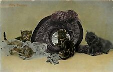 Vintage Cat Postcard; Little Vandals, Kittens Wreck up a Very Fancy Ladies' Hat