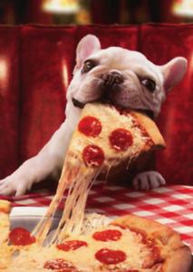 """Hope Your Birthday is a Big Slice of Happy!"" AVANTI CARD French Bulldog w Pizza"