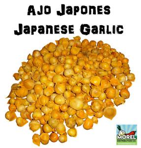 AJO JAPONES (JAPANESE GARLIC) 100% NATURAL!!! 150-250-400 PER BAG