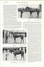 1896 Horse Race Australian Jockey John Stevenson Newmarket High Street Drip Topa
