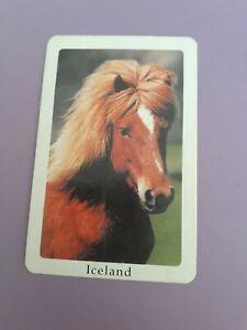 Genuine Vintage,Swap/playing cards, Horses, Iceland.