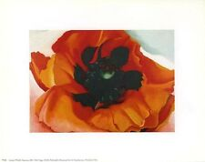 Georgia O'Keeffe: POPPY - Gorgeous 10x8 In Art Print Repro