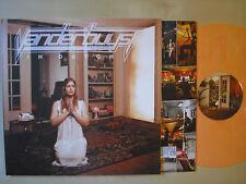 Vanderbuyst – In Dutch - LP  GER  2011  Vinyl  m-