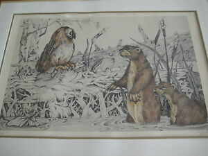 """Vintage Wildlife Art Lithograph Signed By Christ Hoy '78, 24 1/2"""" X 16 1/2"""""""