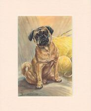Pug Dog Design A6 Textured Birthday Card BDPUG-8-flowers by paws2print