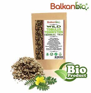 Tribulus Terrestris Stems & Berries Dried Herb 100% Pure & Organic Herbal Tea