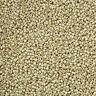 Miyuki Round 15/0 Beads 15-4201F Duracoat Galvanized Matte Silver 8.2g (N22/2)