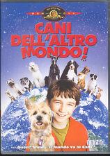 CANI DELL'ALTRO MONDO - DVD (USATO EX RENTAL)