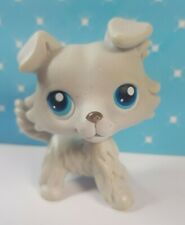 Littlest Pet Shop LPS Figur #363 Collie