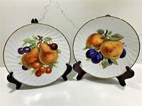 "Vintage Old Nuremberg Bavaria Germany 2 Fruits Pattern China cabinet plates 7.5"""