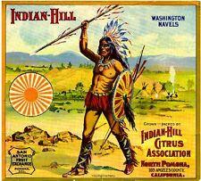 Pomona Los Angeles County Indian-Hill #1 Orange Citrus Fruit Crate Label Print