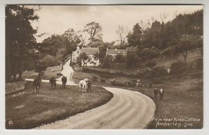 Gloucestershire Postkarte - Blick Nahe Rose Hütte, Amberley (A17)