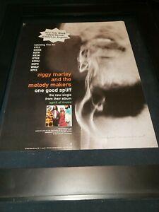 Ziggy Marley One Good Spliff Rare Original Radio Promo Poster Ad Framed!