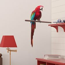 SITTING PARROT ANIMAL NATURE LOUNGE LIVING ROOM BEDROOM WALL STICKER DECAL VINYL