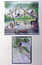TANZANIA Beautiful Birds on 16 Pages U/M Many Uncatalogued NF114