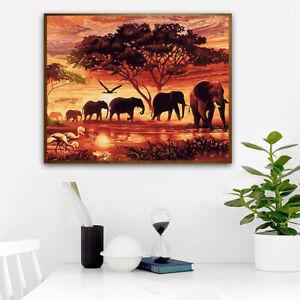 Sunset Elephant Group Diy Hand-Painted Digital Painting Gift,40×50Cm Frameles