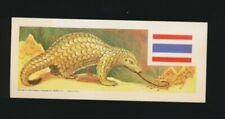 "1964 R757-12 Welch's ""Sugar Daddy"" Animals & Flags of World -#45 Pangolin"