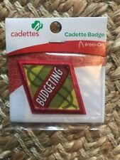 Budgeting Badge Cadette Girl Scouts Boy scout