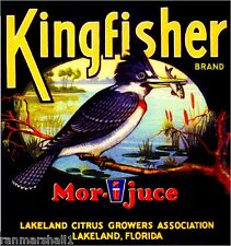 Lakeland Florida Kingfisher Bird #2 Orange Citrus Fruit Crate Label Art Print