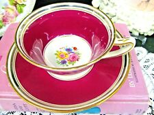 STAR PARAGON tea cup and saucer pretty rose swag & red teacup